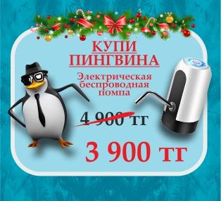 Купи пингвина