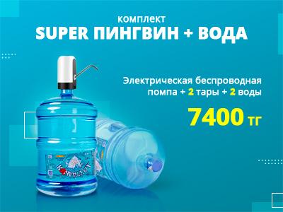 Комплект супер пингвин и вода